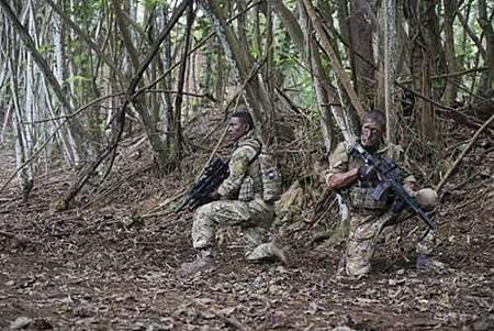 Hawaii Five-0 8x24 (1).jpg