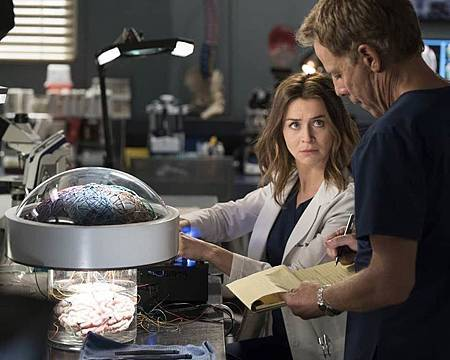 Grey's Anatomy 15×1  (17).jpg