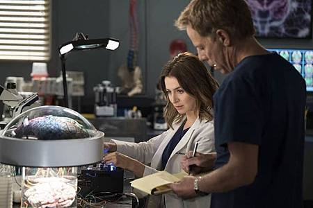 Grey's Anatomy 15×1  (20).jpg