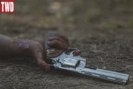 The Walking Dead 9x5 (14).jpg