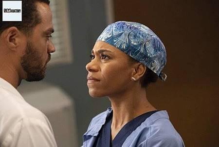 Grey's Anatomy 15x8 (30).jpg