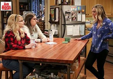 The Big Bang Theory 12x12 (5).jpg