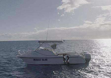 Hawaii Five-O 9x13-21.jpg