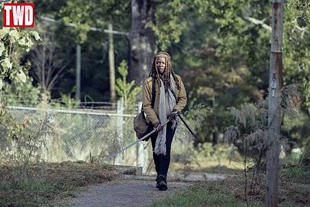 The Walking Dead 9x14 (1).jpg