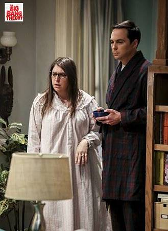 The Big Bang Theory 12x15 (10).jpg