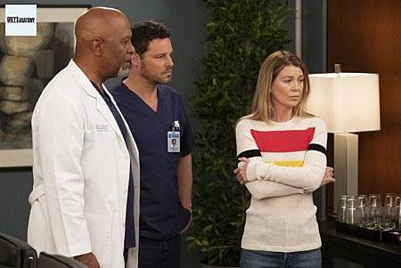 Grey's Anatomy 15x25 (5).jpg