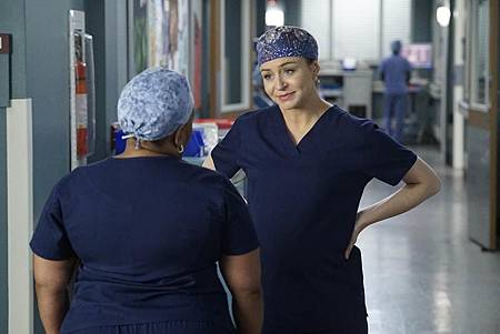 Grey's Anatomy 16×9 (8).jpg