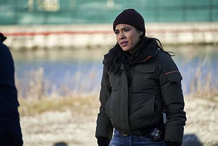 Chicago PD 7×14 (2).jpg