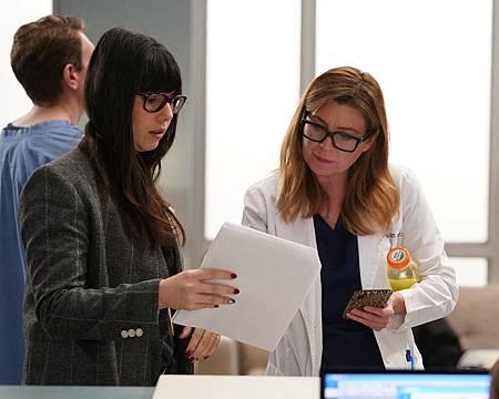 Grey's Anatomy 16×14 (12).jpg