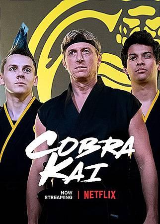 Cobra Kai (1).jpg