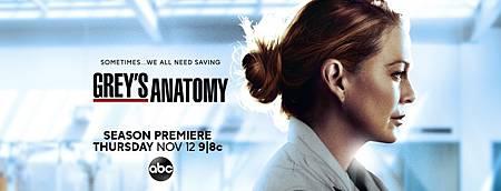 Grey's Anatomy S17 poster (2).jpg