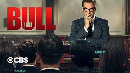 Bull S5 (1).jpg