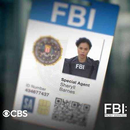 FBI Most Wanted S2 badge (5).jpg