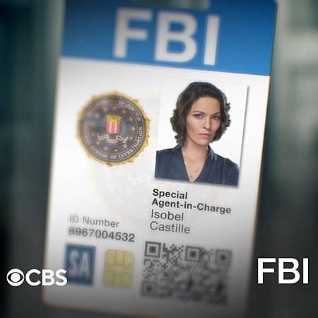 FBI S3 badge (5).jpg