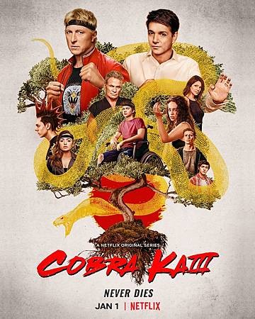 Cobra Kai S3 Poster.jpg