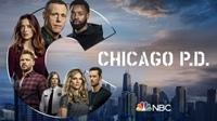 Chicago PD 芝加哥警署