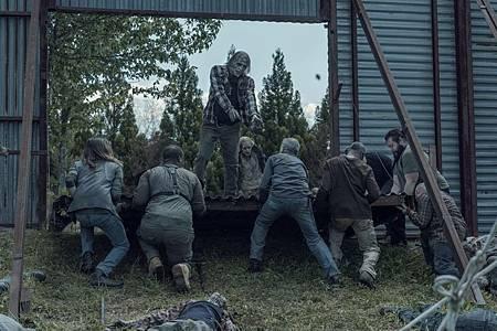 The Walking Dead 11×5 (6).jpg