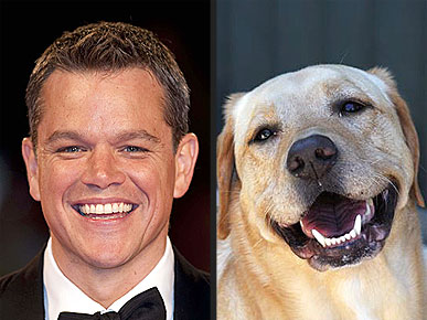 MATT DAMON .1.jpg
