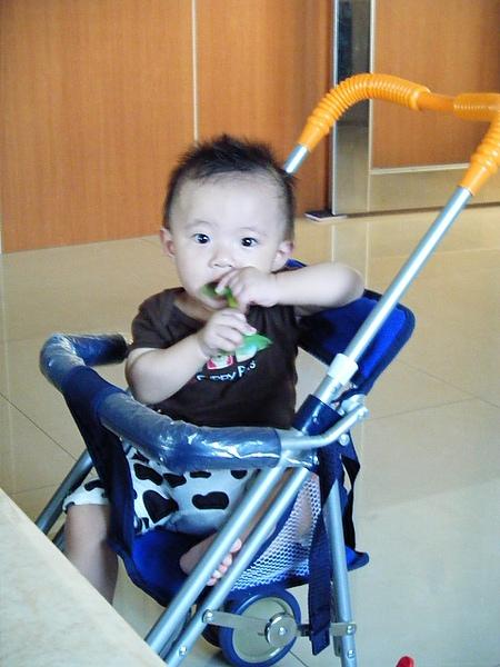 媽媽買的新機車椅推車
