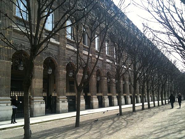 巴黎Palais Royal 皇家花園-1.JPG