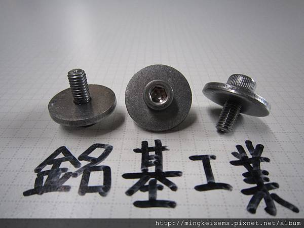 組合螺絲SEMS SCREW 合金鋼內六角螺絲套附平華司(20X2.5)組合M5X12ALLOY STEELHEX SOCKET CAP SCREWS WITH FLAT WASHER ASSEMBLED