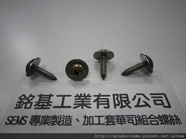 套華司螺絲SEMS SCREWS  白鐵大扁頭自攻尖尾螺絲套附平華司墊圈組合M5X20 STAINLESS STEEL SELF TAPPING SCREWS WITH FLAT WASHER ASSEMBLED