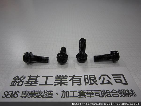 附華司螺絲SEMS SCREWS 圓頭十字螺絲套附彈簧華司組合M6X20 PHILIPS HEAD SCREWS WITH SPRING WASHER ASSEMBLED