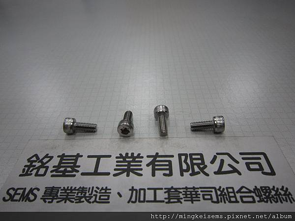 不鏽鋼T-20梅花孔螺絲   STAINLESS STEEL TORX SCREWS T-20