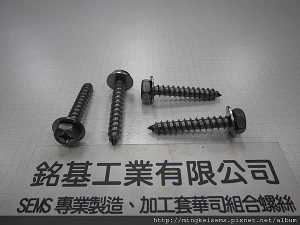 套附華司螺絲SEMS SCREWS 六角頭自攻牙尖尾螺絲套附平華司組合M6X37 HEX HEAD SELF TAPPING SCREWS &FLAT WASHER ASSEMBLED