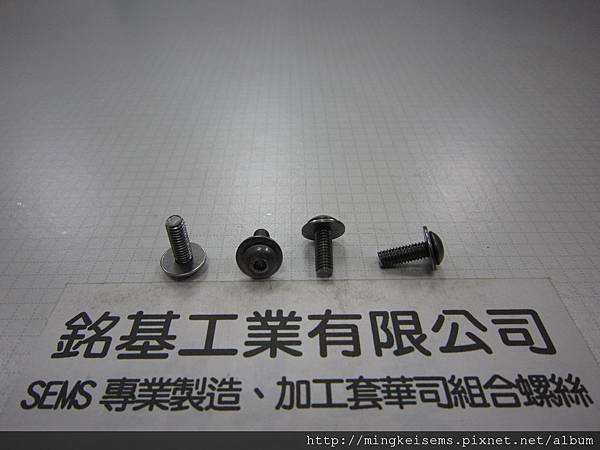 附華司螺絲 SEMS SCREWS 薄頭內六角孔螺絲套附平華司(墊圈)組合M4X12 HEX SOCKET LOW(THIN)HEAD CAP SCREWS & FLAT WASHER(DIN 125)ASSEMBLED