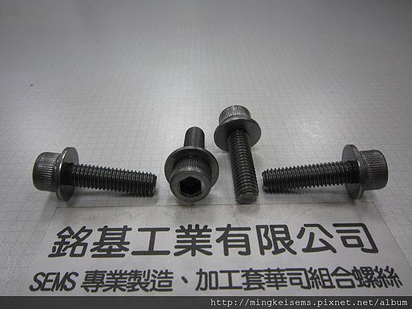 附華司螺絲SEMS SCREWS 內六角孔螺絲套附平華司組合M8X30 HEX SOCKET CAP SCREWS & FLAT WASHERS(DIN 125) ASSEMBLED