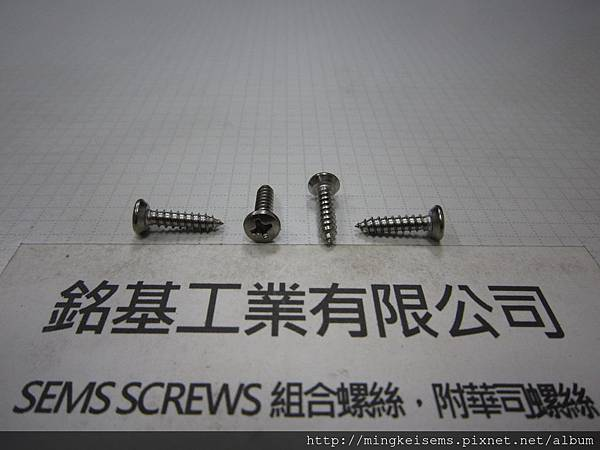 自攻牙螺絲 SELF TAPPING SCREWS 白鐵半圓平頭自攻牙螺絲M6#X4/8 STAINLESS STEEL BUTTON HEAD SELF TAPPING SCREWS