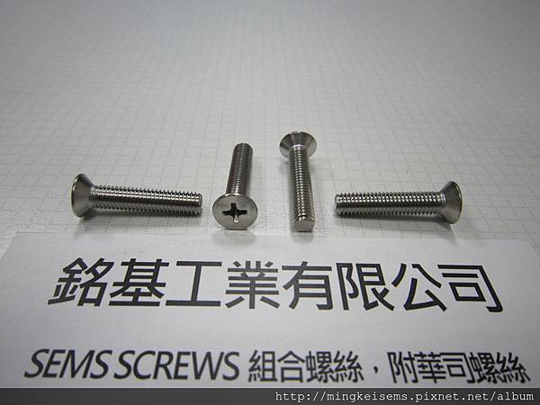 FASTENER SCREWS 白鐵皿頭十字螺絲  M5X25 STAINLESS STEEL PAN HEAD PHILLIPS SCREWS