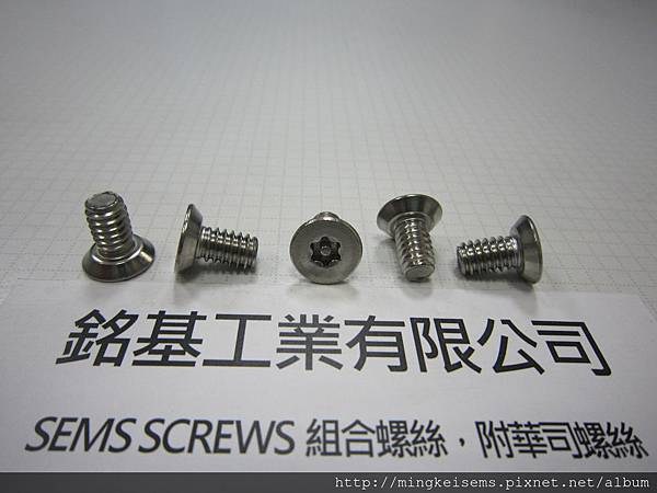 FASTENER SCREWS 白鐵皿頭平底梅花中心柱螺絲 M1/4X1/2 STAINLESS STEEL PAN HEAD FLAT BOTTOM TORX CENTER COLUMN SCREWS