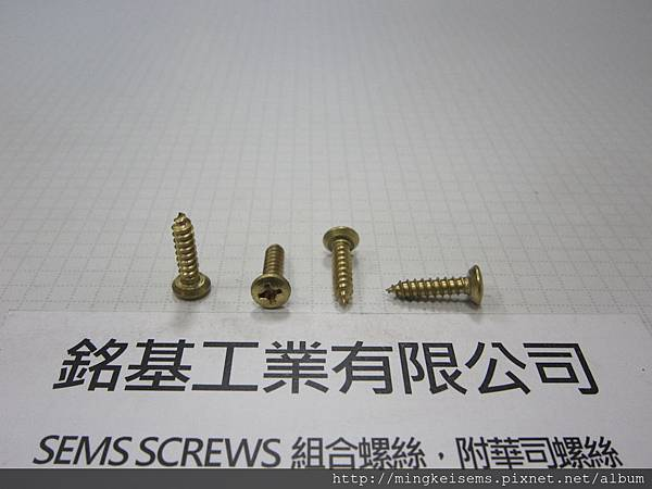 緊固件螺絲 FASTENER SCREWS 銅平底丸皿頭自攻牙螺絲 6#X5/8  BRASS PILLS PAN HEAD SELF TAPPING SCREWS