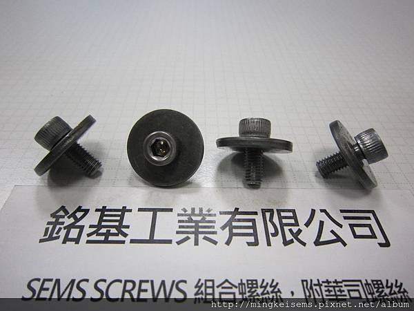 SEMS SCREWS 附華司螺絲 有頭內六角螺絲附平華司組合 M5X12 HEX SOCKET CAP SCREWS WITH FLAT WASHERS ASSEMBLIES