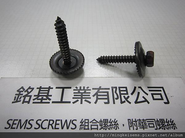 套華司螺絲 SEMS SCREWS 六角自攻牙螺絲套附盤型三角齒華司組合M5X30 HEX HEAD SELF TAPPING SEMS SCREWS WITH TOOTHED LOCK WASHERS ASSEMBLY