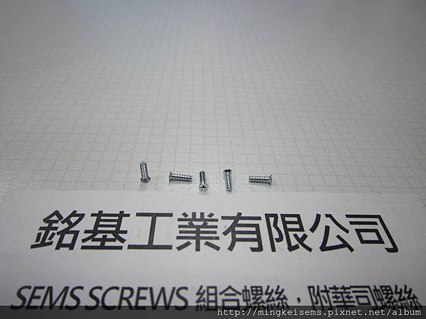 FASTENER SCREWS 平頭自攻牙螺絲 M1.7X5  FLAT HEAD SELF TAPPING SCREWS