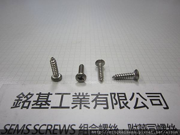 緊固件螺絲 FASTENER SCREWS 白鐵皿頭平底自攻尖尾螺絲  STAINLESS STEEL DISH TYPE FLAT HEAD SELF TAPPING SCREWS