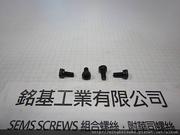 緊固件螺絲 FASTENER SCREWS 有頭內六角孔螺絲 M3X6  HEX SOCKET CAP SCREWS