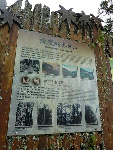 太平山 344.jpg