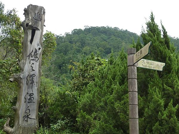 太平山 166.jpg