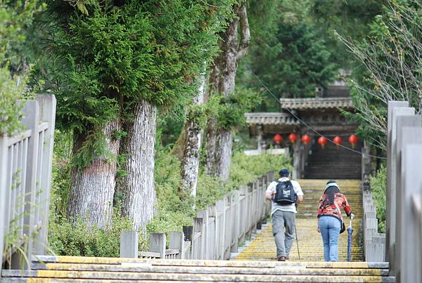 太平山 570.jpg