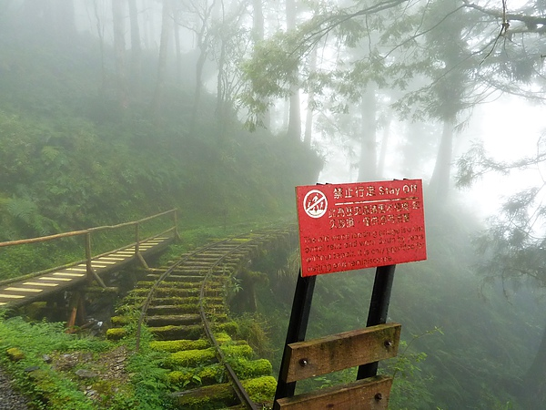 太平山 215.jpg