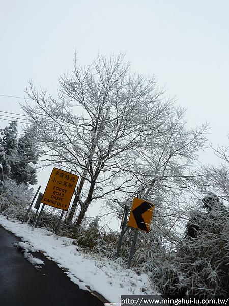太平山~銀白世界 047.jpg
