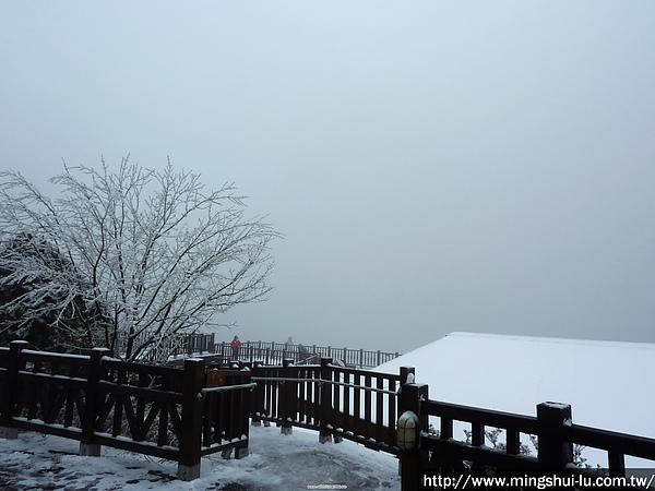 太平山~銀白世界 134.jpg
