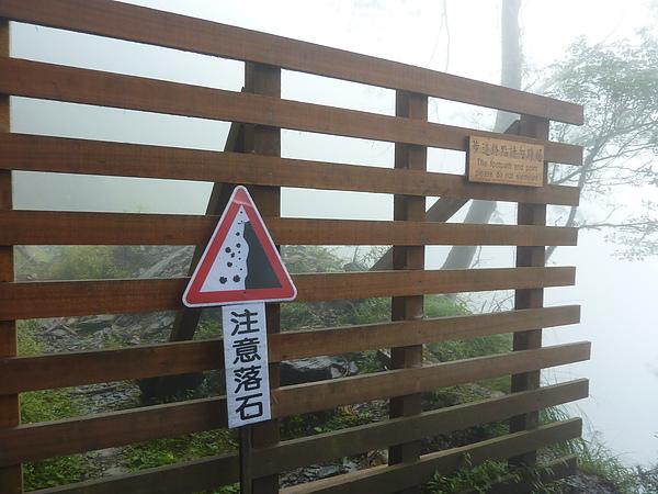 太平山 247.jpg