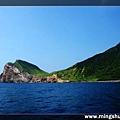 賞鯨 028.jpg