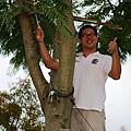 991112樹木修剪 051.jpg