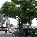 宜蘭美食樂屋日本料理 039.jpg